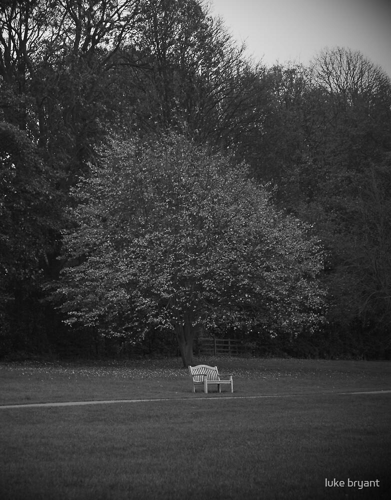 solitude by luke bryant