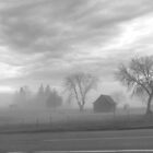 Foggy Evening by JC-Photography