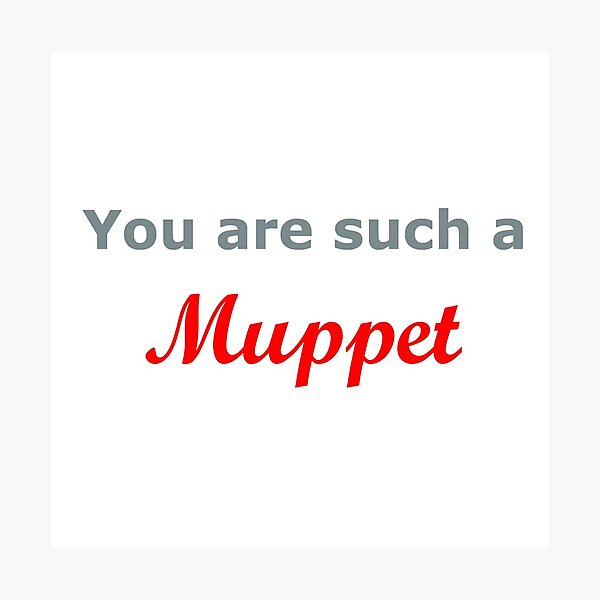You are such a Muppet..... Photographic Print