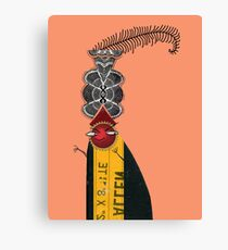 Bad Dude up to no good Canvas Print
