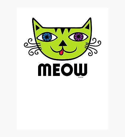 Meow Cat multi Photographic Print