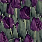 Purple Tulip Abstract by Sherry Hallemeier