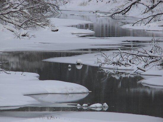 Winter Water by Geoffrey