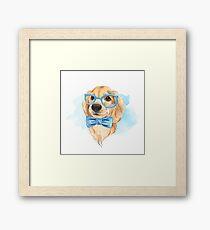 Puppy in blue Framed Print
