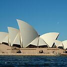 Sydney Opera House by Gino Iori