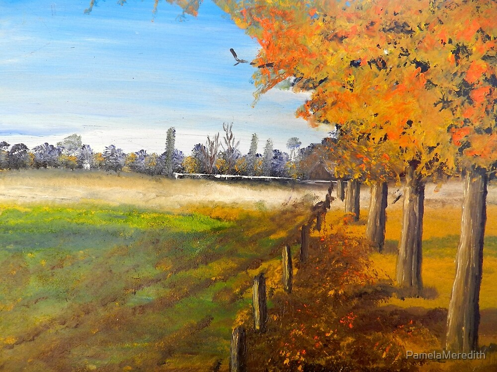 Camden Farm by PamelaMeredith