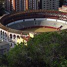 La Malagueta, Malaga by wiggyofipswich