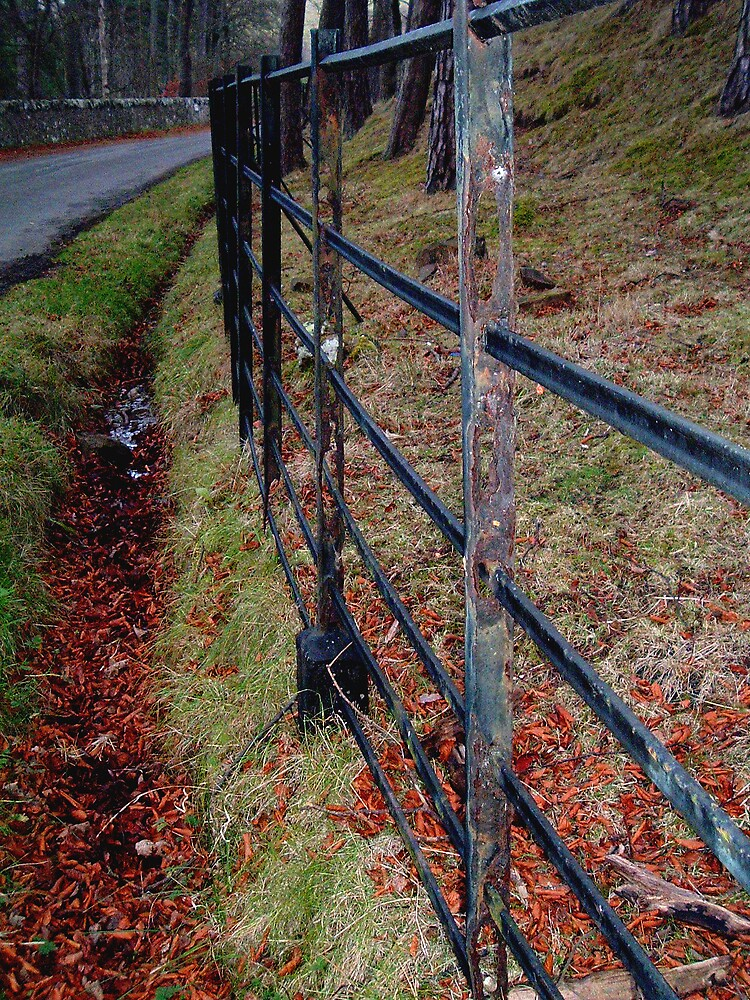 Rusty Fence by Puffling