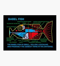 NDVH Babel Fish Photographic Print