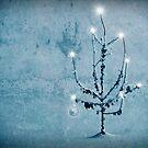 Merry Christmas by Kurt  Tutschek