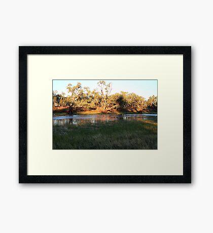 Early morning Camooweal Billabong Queensland Framed Print