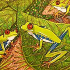 Cute and colourful tree frogs  by Lynn Excell