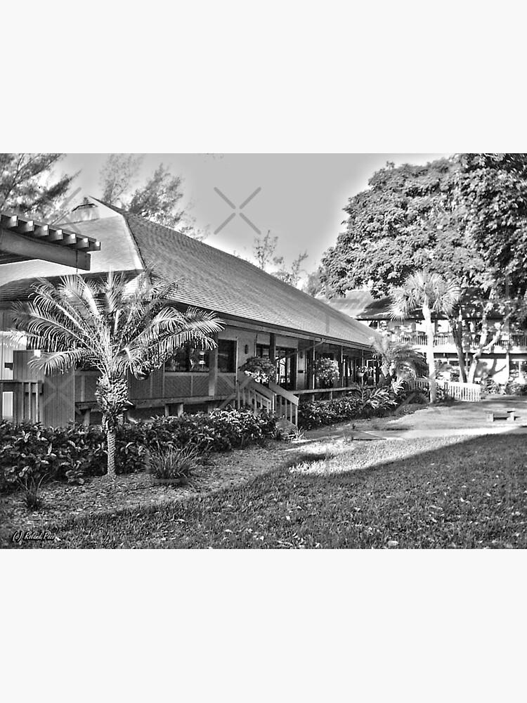 Periwinkle Cottage by photorolandi