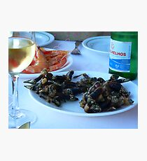 Barnacles and other seafood Photographic Print