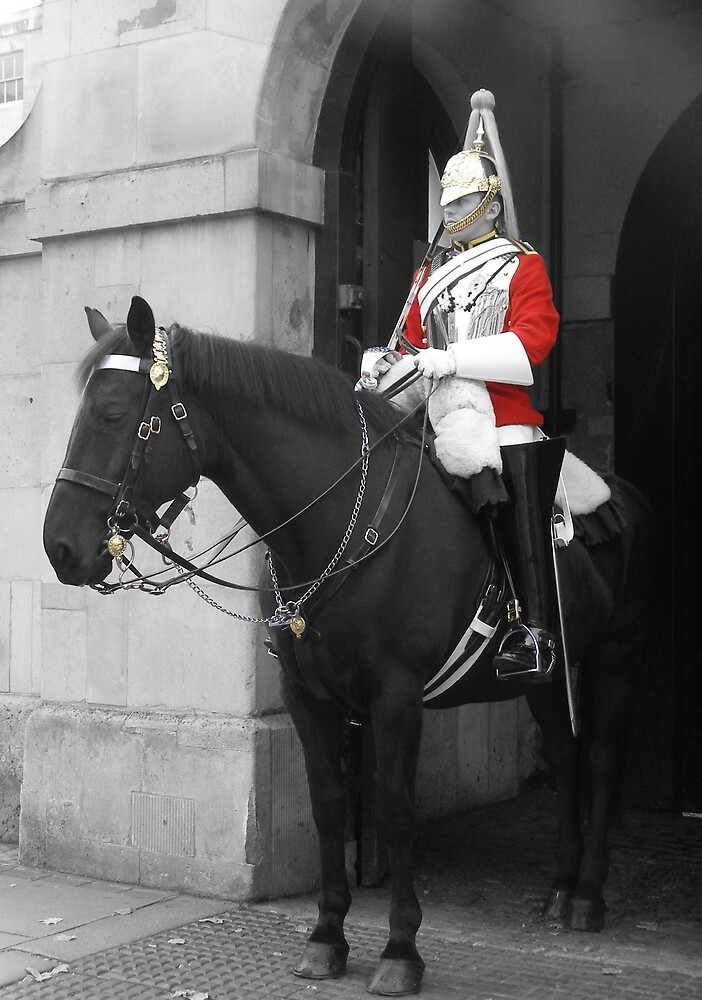 Horse Guard by lmcp 27