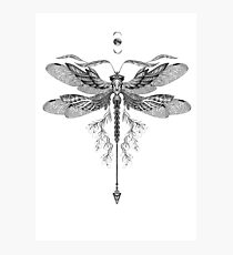 Dragon Fly Tattoo Black and White Photographic Print