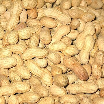 peanuts by fourretout
