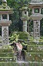 « Nara, Japon » par E-Maniak