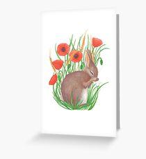 schüchterner Hase unter Mohnblumen Grußkarte