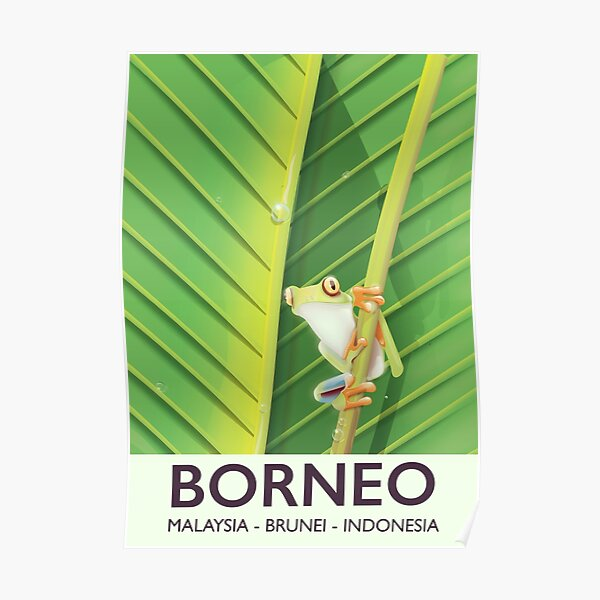 Borneo frog travel poster Poster