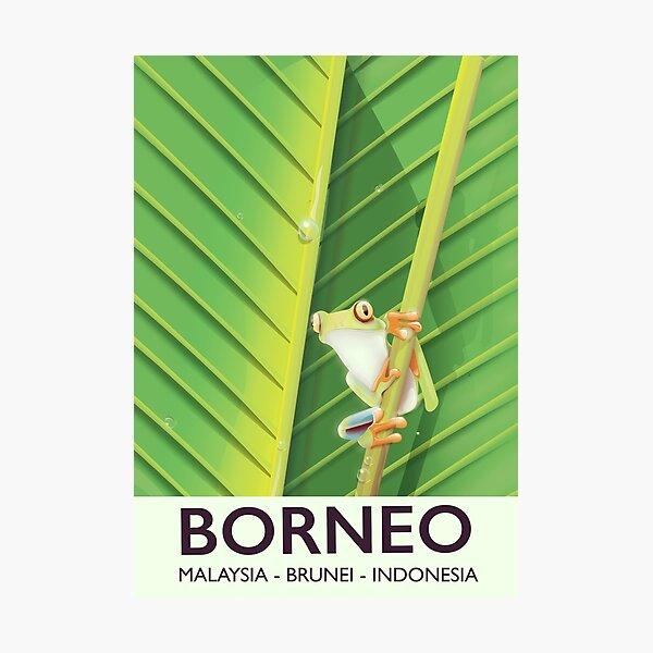 Borneo frog travel poster Photographic Print