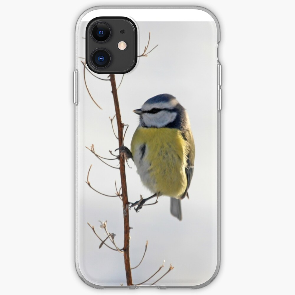 Blue Tit in winter iPhone Case & Cover