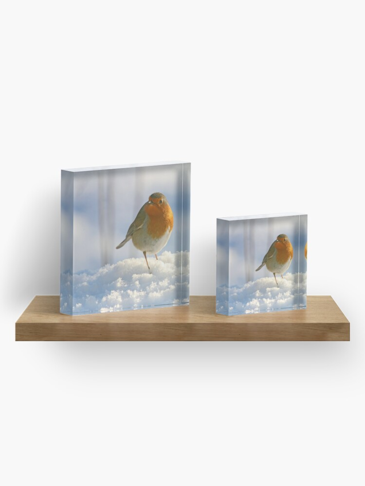 Alternate view of Winter robin Acrylic Block