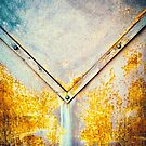Iron gate detail by Silvia Ganora