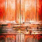 Rotten door with rusty lock by Silvia Ganora
