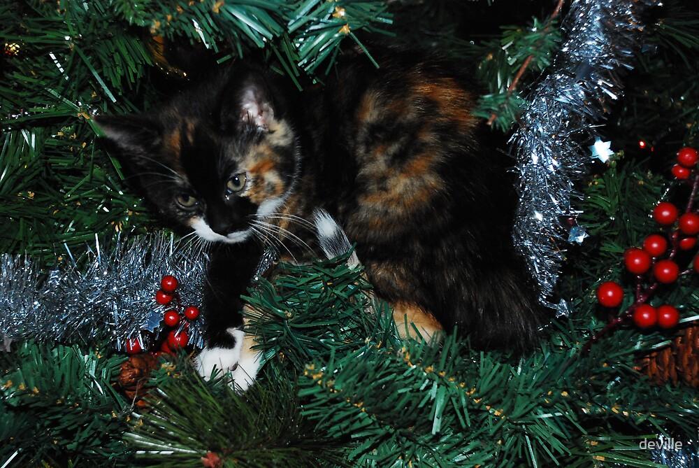 kitten in tree by deville