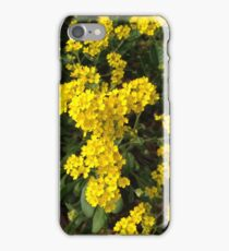 Joyful Springtime Flowers iPhone Case/Skin