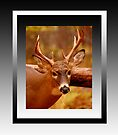 Deep in Thought (reframed for wall art/prints) by TerriRiver