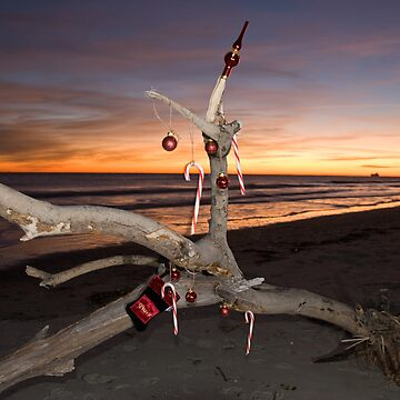 A Beach Bum's Christmas Tree by ButchPetty