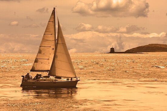 Sailing on a Sea of Gold by Buckwhite