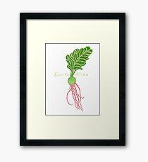 Earth Alien Watermelon Radish Framed Print