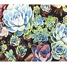 Succulent Field (watercolor) by geothebio