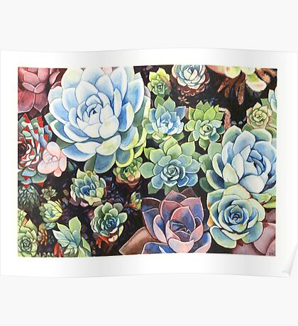 Succulent Field (watercolor) Poster