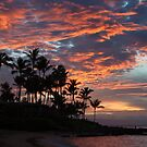 Maui Sunset by Barb White