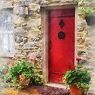 Geraniums by Red Door by Susan Savad