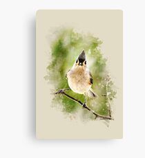 Tufted Titmouse Watercolor Canvas Print