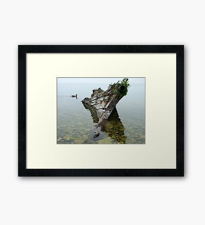 Tobermory shipwreck Framed Print