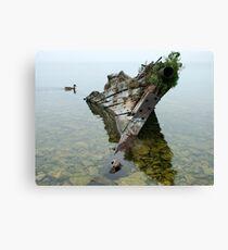 Tobermory shipwreck Canvas Print