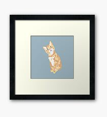 Friday Framed Print