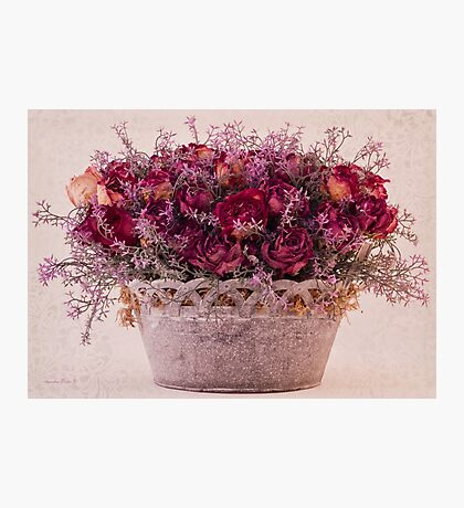 Pink Dried Roses Floral Arrangement Photographic Print