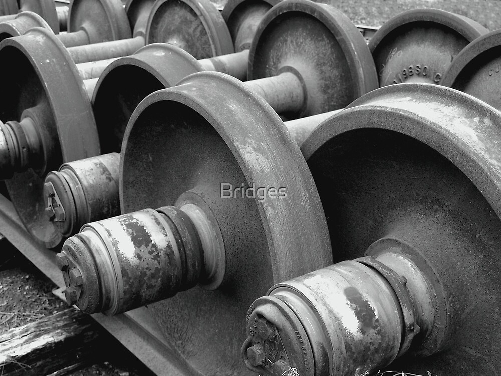 Railroad at Rest by Bridges