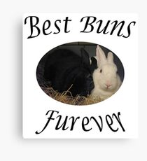 Best Bunnies furever Canvas Print