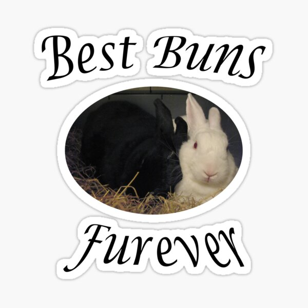 Best Bunnies furever Sticker