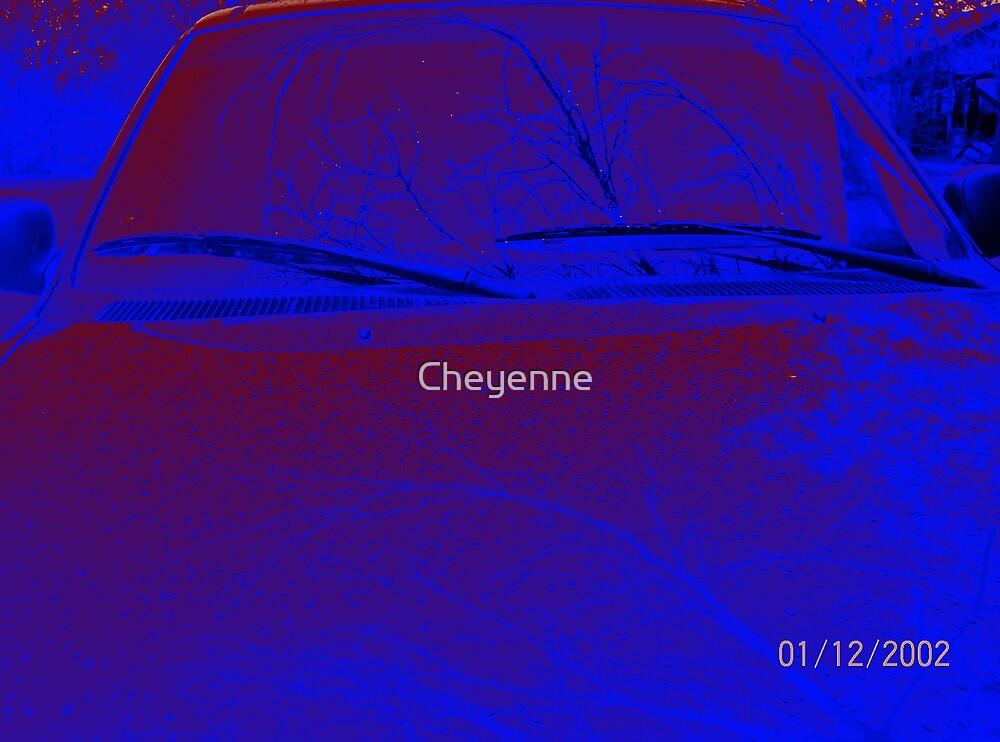 Cheyenne by Cheyenne