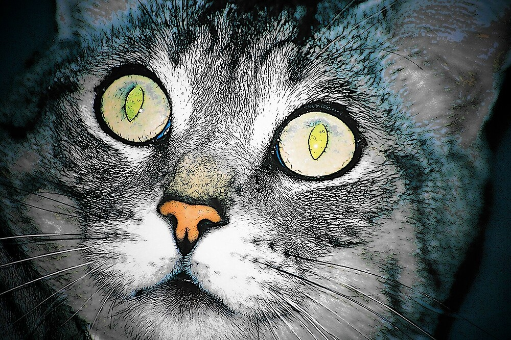 CAT ART by mark anthony