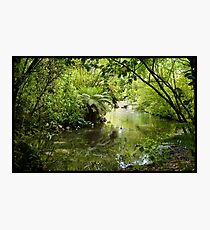 Tranquil Waters Photographic Print